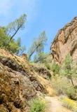 Monument national de pinacles Image libre de droits