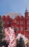 Monument om Zhukov, de Lente, Manezhnaya-Vierkant te rangschikken stock afbeelding