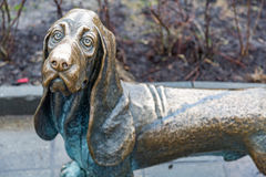 Monument to help pets in Kostroma, Russia Royalty Free Stock Photo