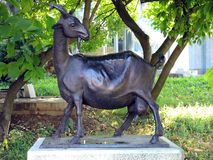 Monument to Tuzla`s goat. The monument to Tuzla`s garden was created by the saying: `Whole Tuzla one goat`s milked Stock Images