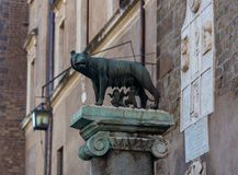 Monument to the she-wolf who raised Romulus and Remus in Rome, Italy royalty free stock photos