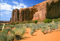 Monument Valley. Yucca bushes and monoliths Stock Photo