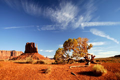 Monument Valley. Sunset in Monument Valley Navajo Tribal Park, Arizona Royalty Free Stock Photography