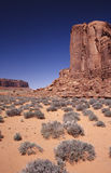 Monument Valley. Bushes and rocks in the Monument Valley Royalty Free Stock Image