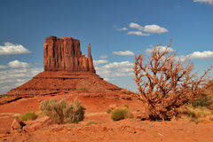 Monument Valley. Blick auf The Mittens im Monument Valley Stock Image