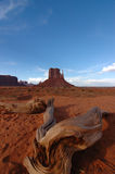 Monument Valley from another perspective. Monument Valley from a wood perspective with a grandangle stock images