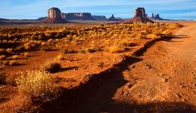 Monument Valley Desert Landscape. Desert vegetation in Monument Valley Tribal Park, Arizona Royalty Free Stock Photos
