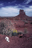 Monument Valley landscape Navalo Reservation Royalty Free Stock Photography