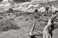 Monument valley monochrome landscape view Stock Photo