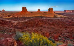 Monument Valley sunset with yellow plant. Monument Valley sunset with a blue sky and yellow plants Royalty Free Stock Photography