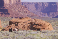 Monument Valley Tribal Park, Arizona Royalty Free Stock Images