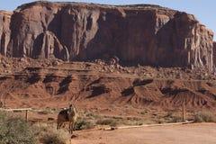 Monument Valley, Utah/Arizona, USA Royalty Free Stock Photography