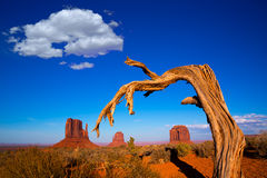 Monument Valley West And East Mittens And Merrick Butte Royalty Free Stock Image