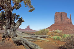 Monument Valley in Winter Stock Photos