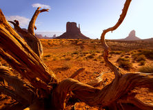 Monument West Mitten Butte in morning Utah Stock Photos