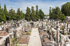 Monumental Cemetery Stock Photos