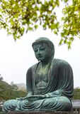 Monumental famous bronze statue of the great buddha   & x28;Daibutsu& x29;. In Kotokuin Temple, Kanagawa prefecture, Kanto region, Japan, Tourist Attractions& Stock Image