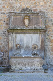 Monumental fountain. Tuscania. Lazio. Italy. Stock Photo