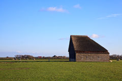 Monumental sheep barn on texel Royalty Free Stock Image