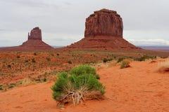 Monumentdal, Arizona och Utah, USA Arkivfoto