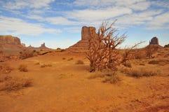 Monumentenvallei (Tsé BiiÊ ¼ Ndzisgaii); Arizona/Utah Royalty-vrije Stock Foto's