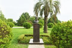 Monumentet till grundaren av dendrologyen parkerar sydliga kulturer Daniil Drachevsky In Adler Arkivbilder