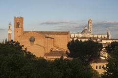 Monumenti di Siena Fotografie Stock