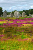 Monumenti megalitici in Brittany Immagini Stock Libere da Diritti