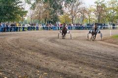 Monumento Bata General de la carrera de caballos Fotografía de archivo libre de regalías