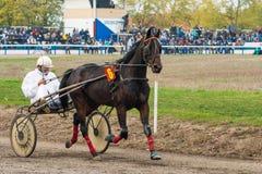 Monumento Bata General de la carrera de caballos Imágenes de archivo libres de regalías
