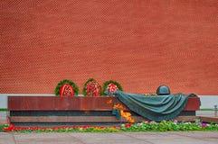 Monumento da guerra Foto de Stock