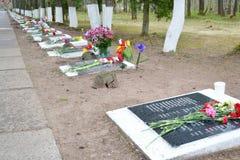 Monumento de guerra en las alturas de Sinyavino Fotografía de archivo libre de regalías