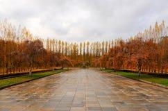 Monumento de guerra soviético en el parque de Treptower, panorama de Berlín, Alemania Foto de archivo libre de regalías
