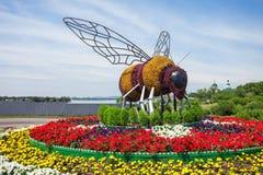 Monumento de la abeja en Irkutsk Imagen de archivo libre de regalías