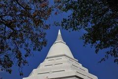 Monumento de la pagoda en Tailandia Imágenes de archivo libres de regalías