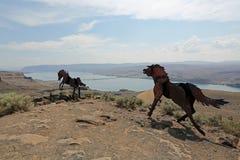 Monumento dei cavalli selvaggi Fotografie Stock Libere da Diritti