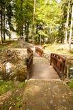 Monumento del oso en Polanica Zdroj Imágenes de archivo libres de regalías