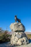 Monumento del perro del collie en el lago Tekapo, Nueva Zelanda foto de archivo