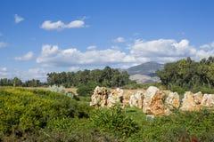 Monumento del yashuv del esquileo imagenes de archivo