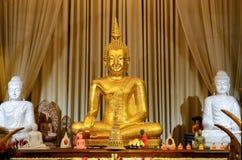 Monumento di Buddhas nel tempio Fotografie Stock Libere da Diritti