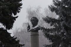 Monumento di inverno Fotografia Stock