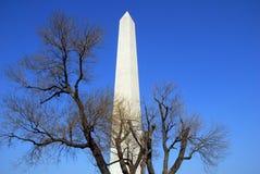 Monumento do Washington DC fotos de stock royalty free