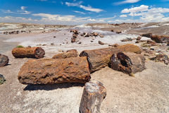Monumento nacional de floresta Petrified Foto de Stock Royalty Free