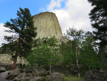 Monumento nacional de la torre del ` s del diablo con los árboles de pino Imágenes de archivo libres de regalías