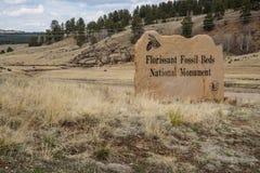 Monumento nacional de las camas fósiles de Florissant Foto de archivo