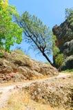 Monumento nacional dos pináculos Imagem de Stock