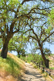 Monumento nacional dos pináculos Fotografia de Stock Royalty Free