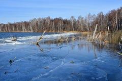 Monumento natural - lago Uvildy en último otoño en el tiempo claro, región de Cheliábinsk Rusia El bosque en la orilla de la isla imagenes de archivo