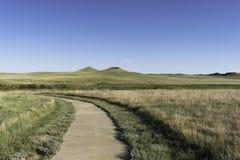 Monumento nazionale dei letti fossili dell'agata Immagine Stock Libera da Diritti
