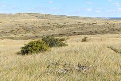 Monumento nazionale del campo di battaglia del Little Bighorn Immagine Stock